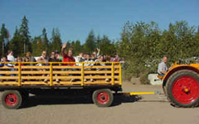 Hayride at Oregon Dunes KOA